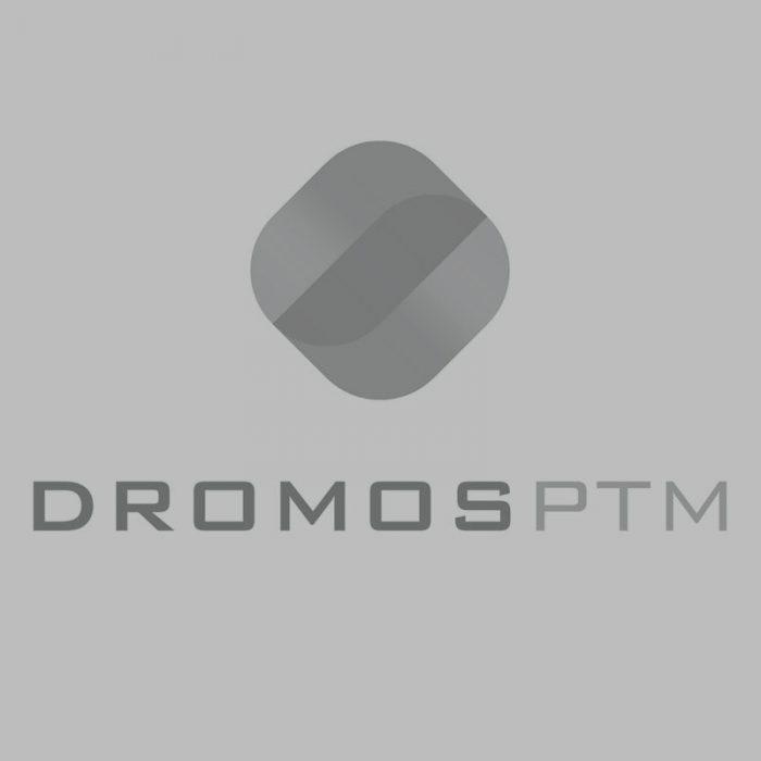 Dromos Logo